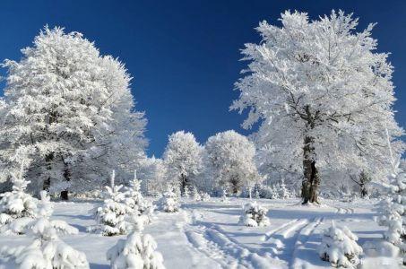 有关于形容冬天的成语